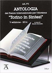 Torino In Sintesi